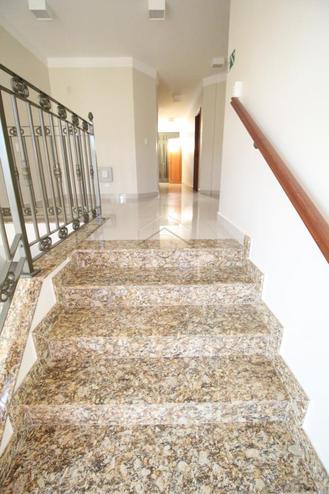 Alugar Comercial / Casa em Ribeirão Preto apenas R$ 8.000,00 - Foto 17