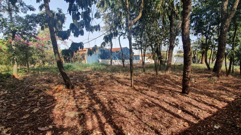 Comprar Terreno / Padrão em Ribeirão Preto apenas R$ 140.000,00 - Foto 3