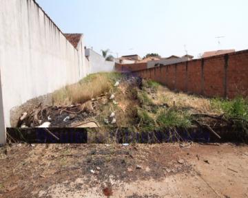 Alugar Terreno / Padrão em Ribeirão Preto. apenas R$ 180.000,00